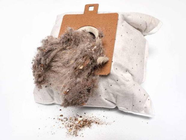 A fully filled vacuum dust bag