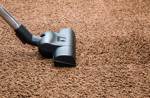 Using-a-Vacuum-Clean-for-cleaning-shag-rug