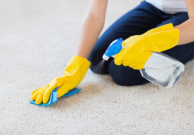 Removing Dog Hair from Carpet with Rubber Gloves
