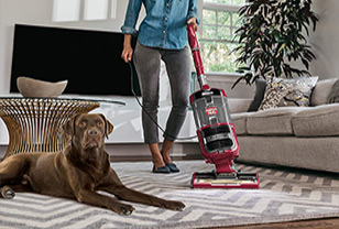 My shark vacuum won't turn on - how to fix at home